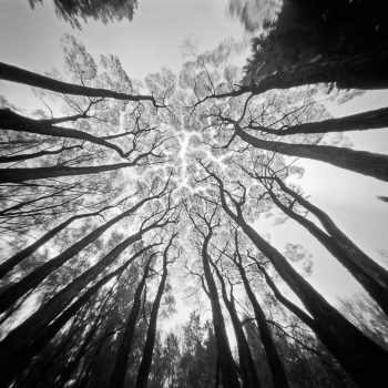 Pinhole example from Flickr